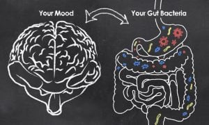 gut bacteria and mood | ActivatedYou