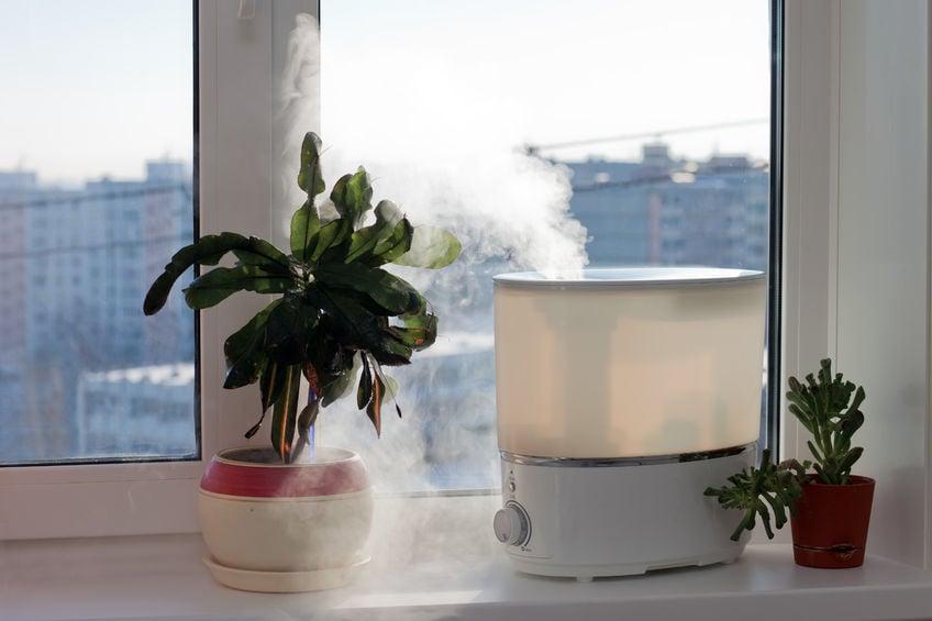 winter humidifier