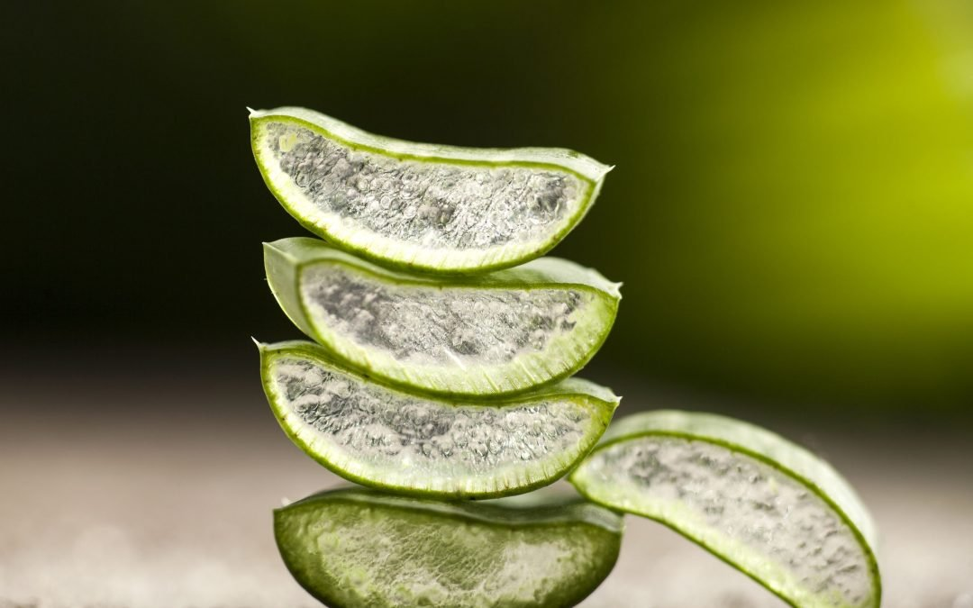 The Age-Old Secrets Of Aloe Benefits (Not Just For Sunburn)