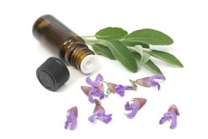 Benefits of Sage | Activated You
