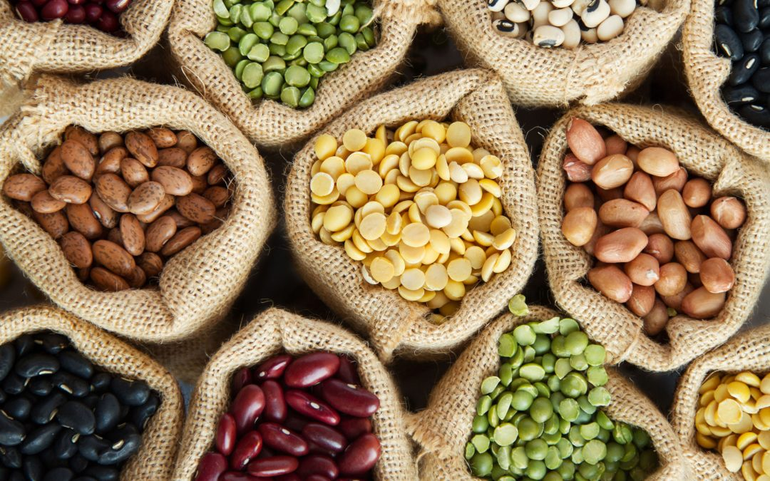 Vegan and Vegetarian Staples: Legumes