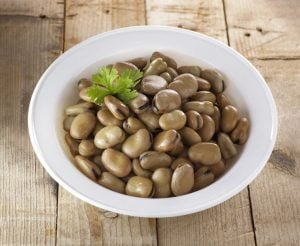 legumes | Activated You