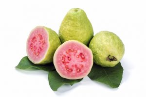 Benefits of Guava Leaves | Activated You