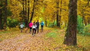 fall fitness | Activated You