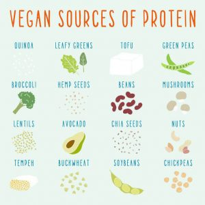 vegan sources of protein | Activated You