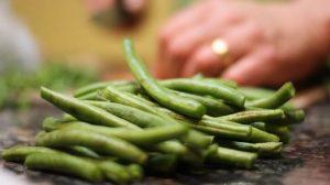 funny green bean facts | ActivatedYou