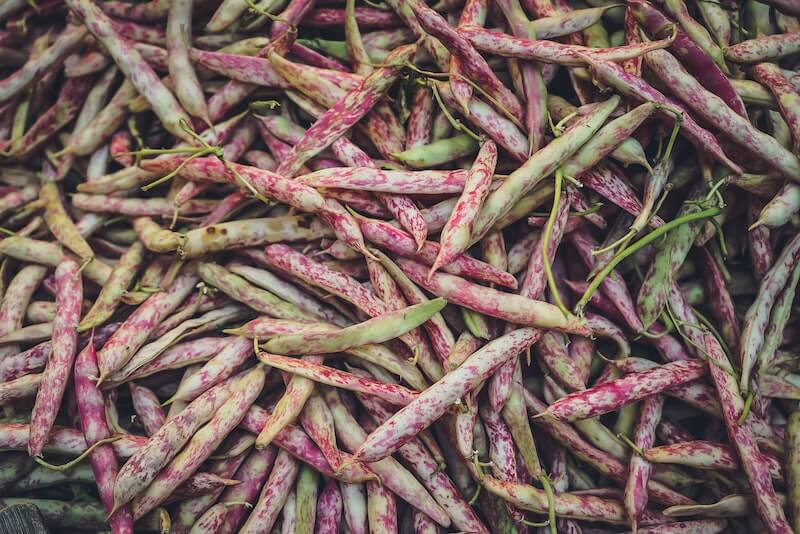 red green beans | ActivatedYou