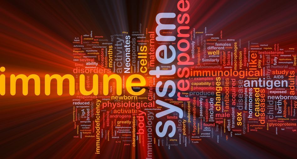 immune system word cloud | Activated You