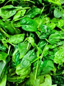 leaf spinach | Activated You
